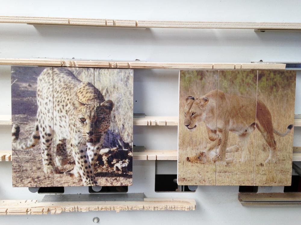 dierenfoto-op-duurzaam-hout
