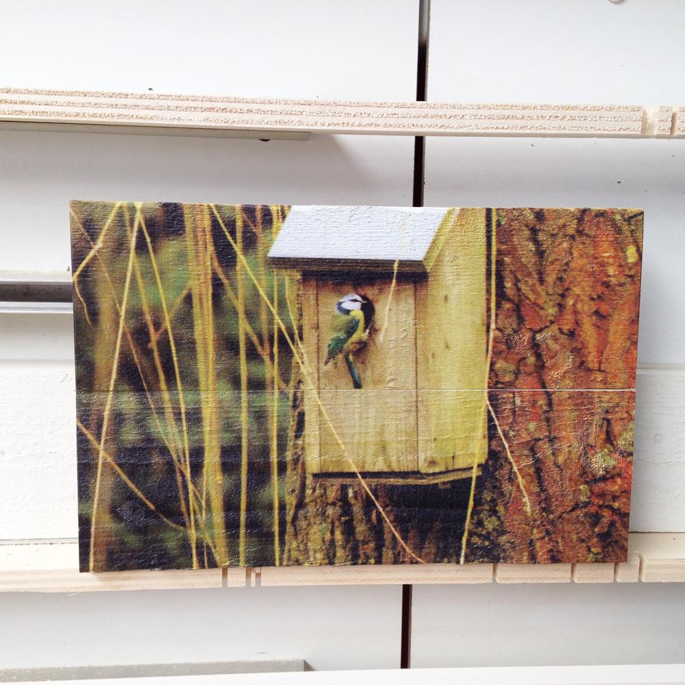 foto-op-vurenhout